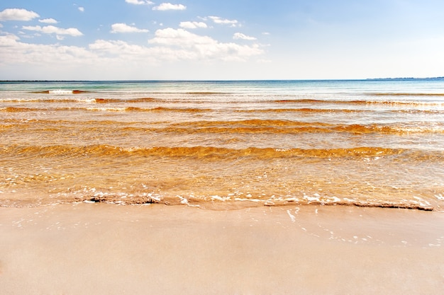 Soft wave of the sea on the sandy beach. blue sky, golden sand and place for text. varadero, cuba, caribbean sea.