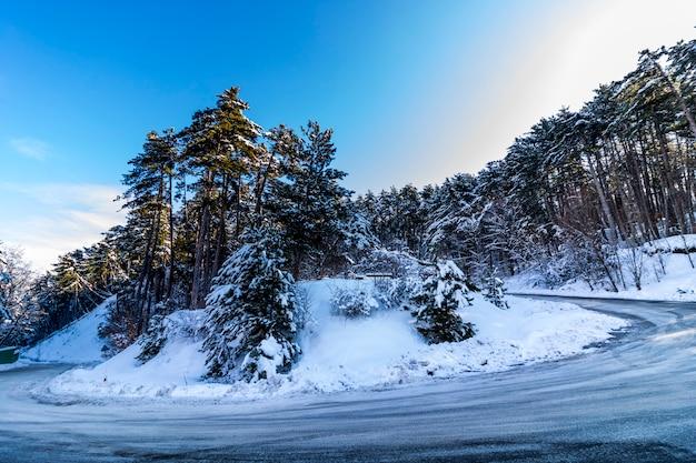 Soguksu national park, winter, snow, forest, kizilcahamam, ankara