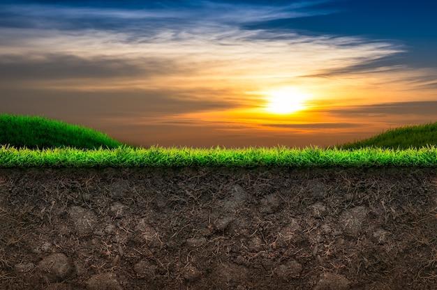 Почва и зеленая трава на закате