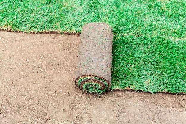 잔디의 녹색 롤로 토양 코팅