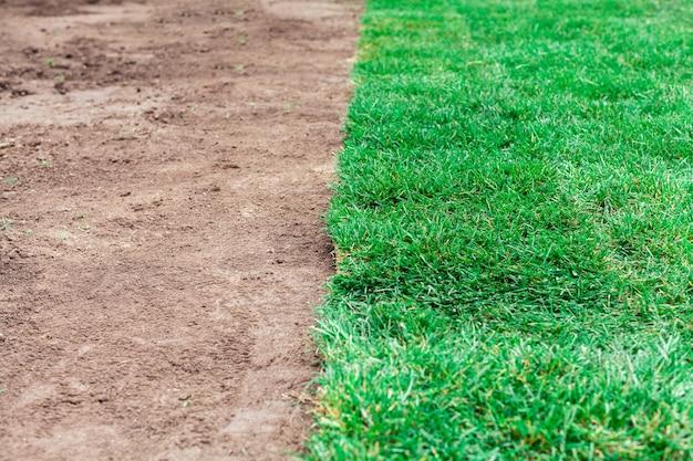 芝生の緑のロールで土壌コーティング