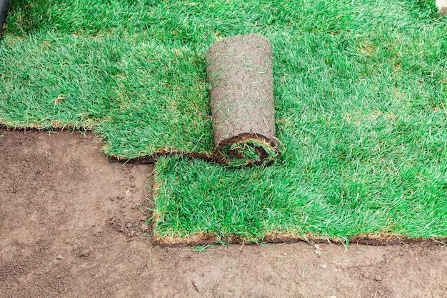 Покрытие почвы зелеными валками газона