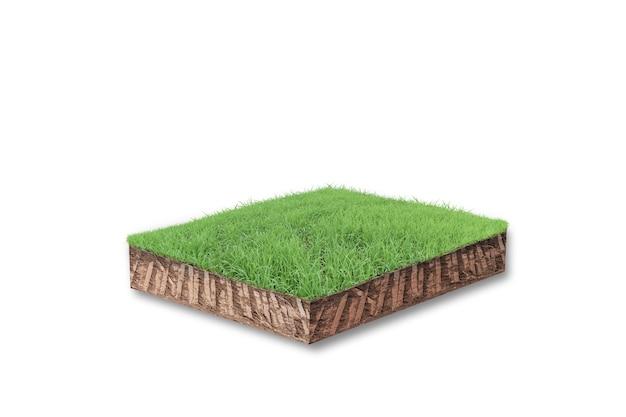 白で隔離される緑の草と土壌立方体断面