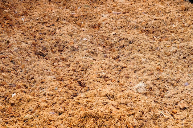 Soil for cultivation to make food for plants