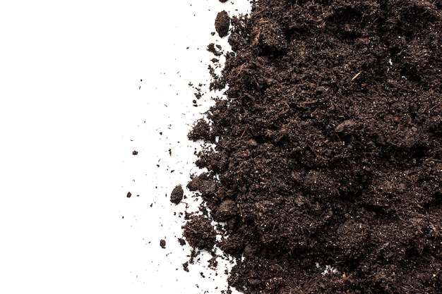 Soil dirt isolated on white background