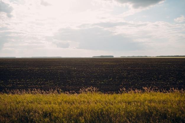 農地の土壌