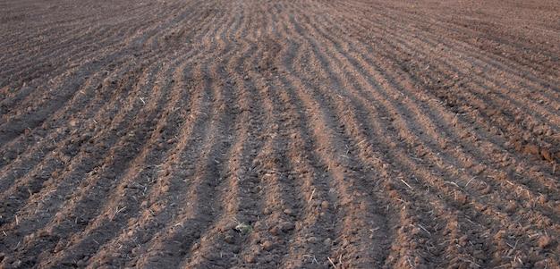 播種に備えた農業分野の土壌、耕作土壌の背景テクスチャ。