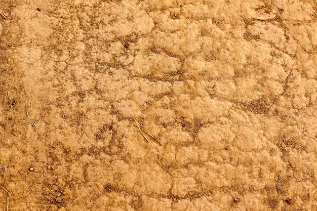 Почва на земле в качестве текстуры и фона.