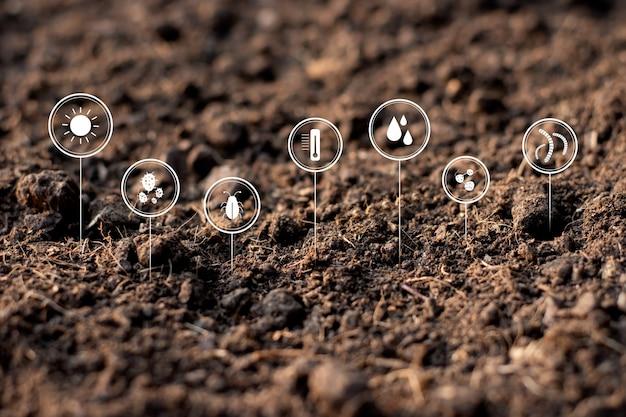 Предпосылка текстуры почвы, плодородная почва для посадки.