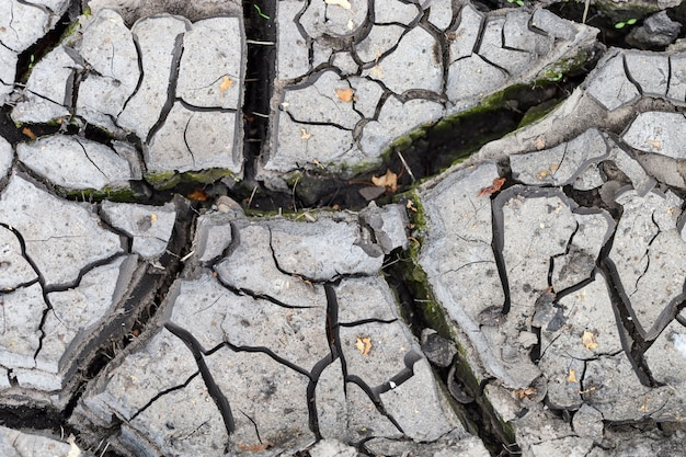 Soil texture. cracks in dry ground. dried mud. natural environment.