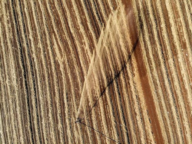 サトウキビ農園における土壌処理。
