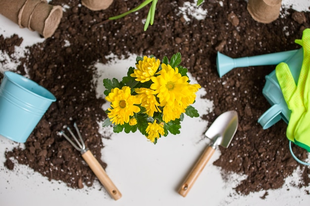 Soil, watering can, flower pot, shovel, rake