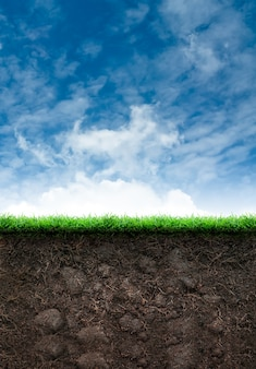 Soil with grass and blue sky
