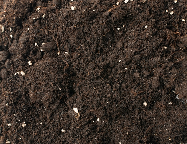 Soil with mineral fertilizers for gardening texture background