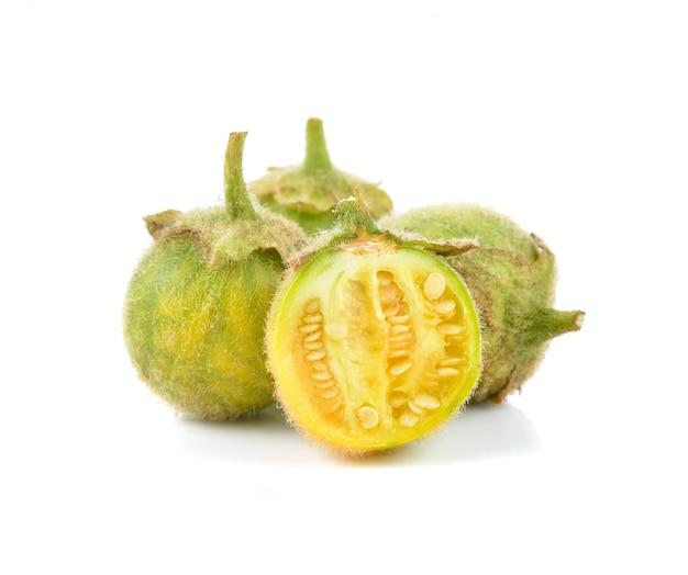 Solanum ferox isolated on white