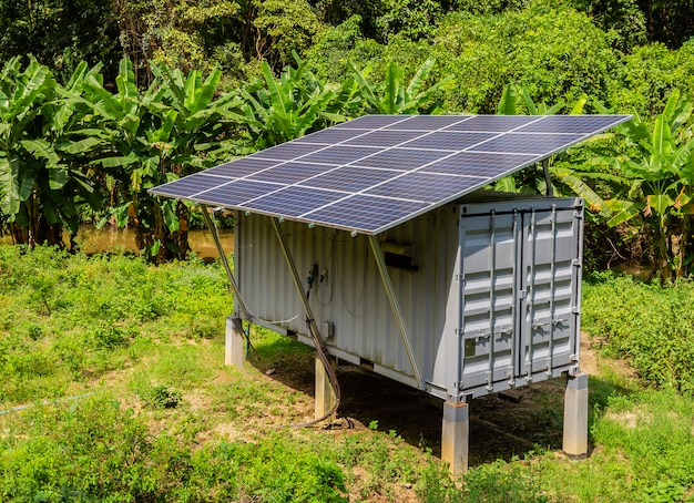 Solar cell is suitable for use on the jungle