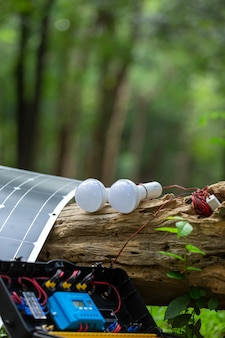 Solar cell with lamp in the forest