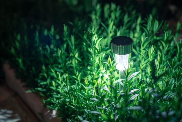 Solar lanterns garden light with shrubs at home