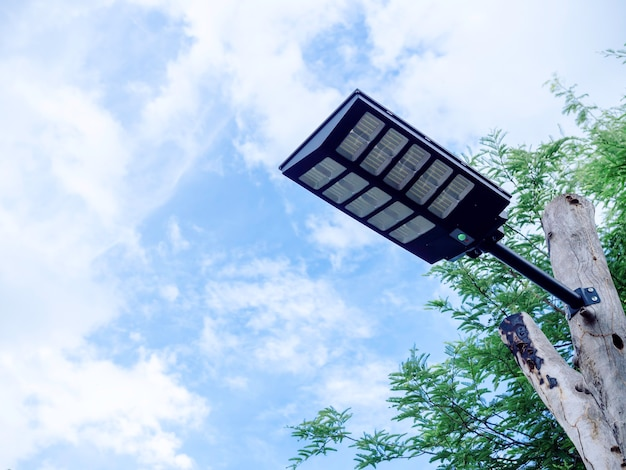 Solar light mounted on a wooden pole with green leaves on blue sky background with copy space. street lamp with solar panel, view from under.