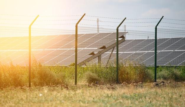 Солнечные панели посреди поля в солнечный день, украина
