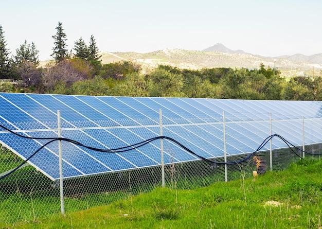 Солнечные батареи размещены на загородном лугу.