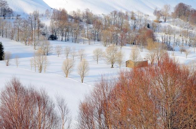 カンタブリアのパスバレーの雪景色にある孤独なキャビン