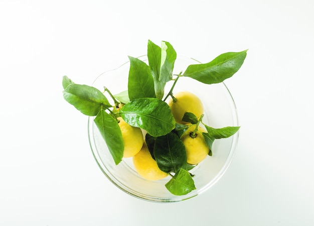 Some fresh ripe lemons with leaves in a large glass bowl on the table.
