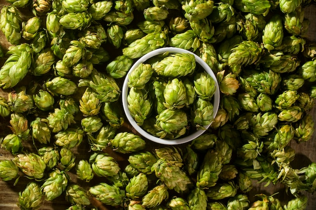 Some hops on top of the view.