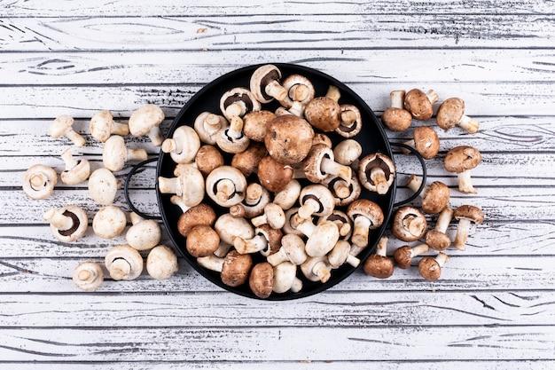 접시와 그 주위에 흰색과 갈색 버섯의 일부