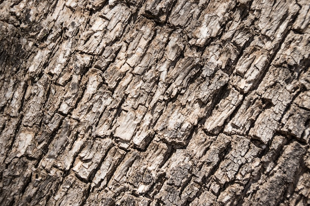 Some textures of materials and background