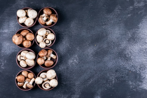 Some of white and brown mushrooms in bowls on dark table