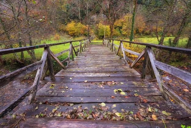 Somiedo自然公園、アストゥリアス、スペインの川の木製の橋