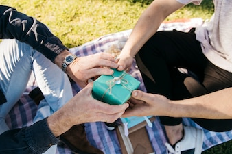 Son giving present to father on picnic cloth