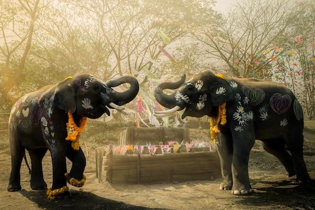 Songkran festival elephants of priceless thailand