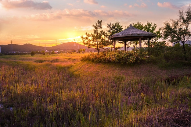 Sorae ecology wetland park, beautiful sunset and traditional windmills, incheon south korea