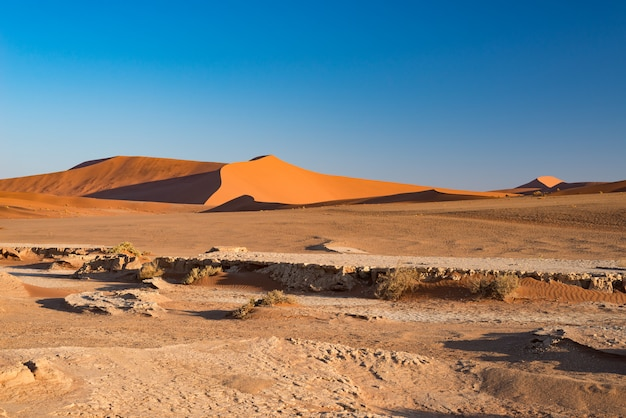 Sossusvlei namibia, travel destination in africa. sand dunes and clay salt pan.