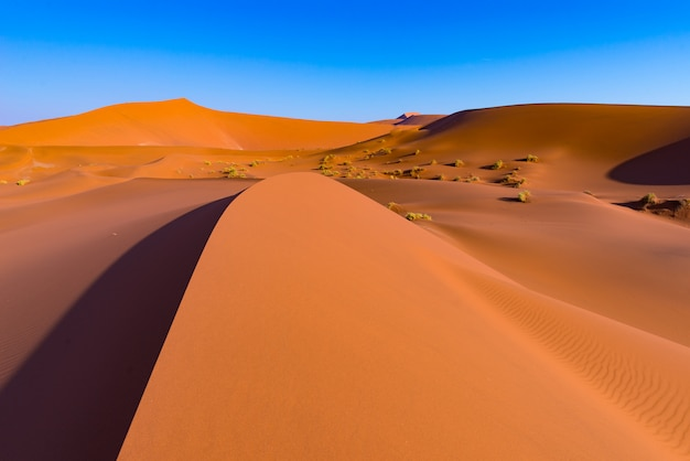 Sossusvlei sand dunes, namib naukluft national park, namib desert, scenic travel destination in namibia, africa.