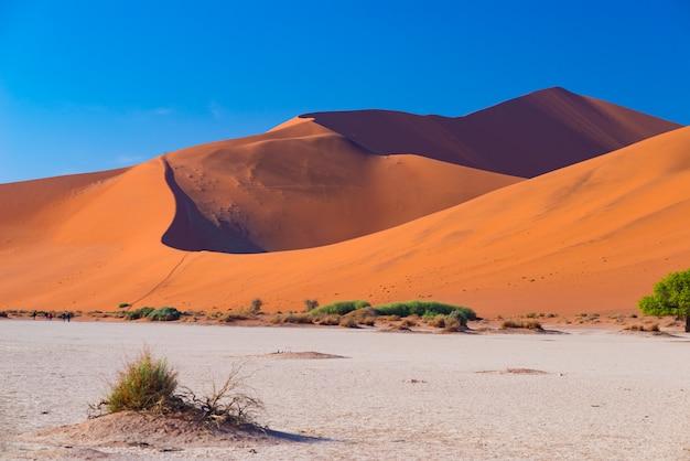Sossusvlei намибия, путешествие в африку. песчаные дюны и глиняная солонка.