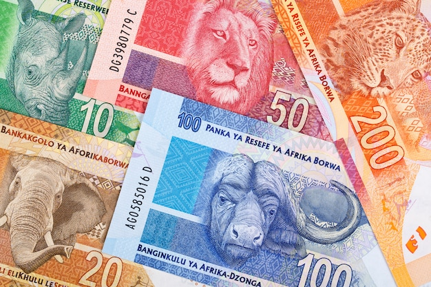 South african money a business background