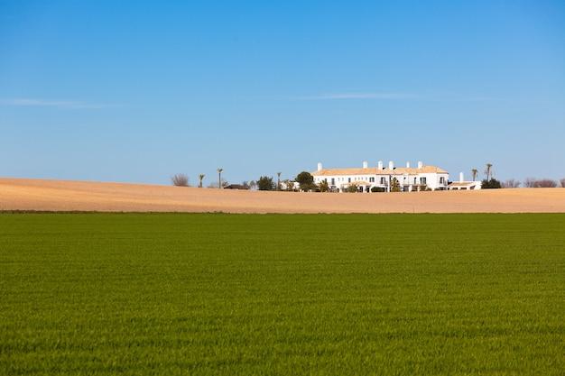 남쪽 스페인 집과 그린 필드 농촌 풍경입니다. 가로 샷