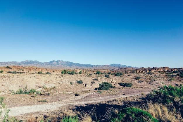 砂漠と山々のあるアメリカ南西部の古典的な風景