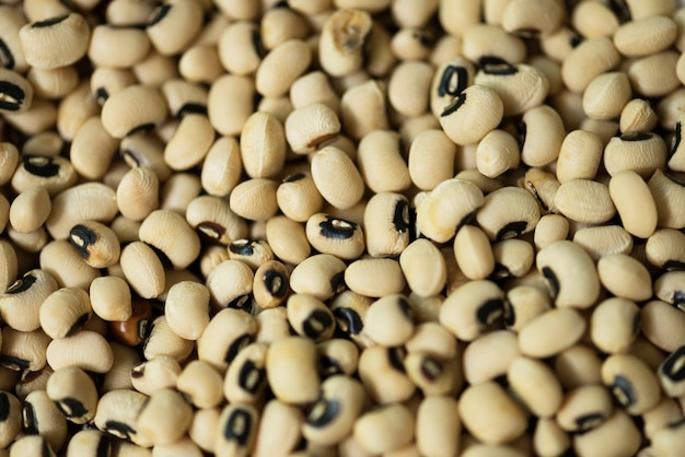 Soy beans texture background
