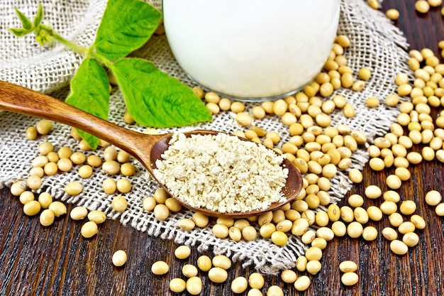 Soy flour in a spoon and milk in glass jug, soybeans and a leaf on napkin of burlap on wooden board background