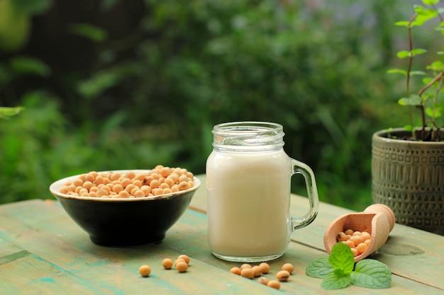 음료 항아리에 두유와 그릇에 콩. 유제품이 아닌 건강한 개념