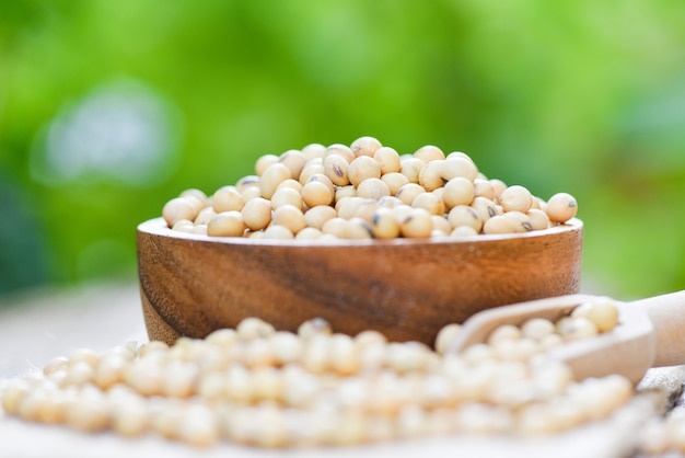 Soya , soybean in a wooden bowl agricultural products / dry soy beans with nature background