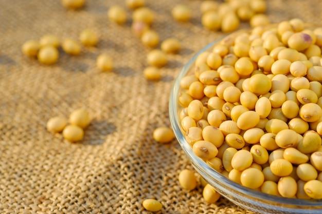 コピースペースでボウルに大豆。クローズアップsoybean.beansプレートで乾燥