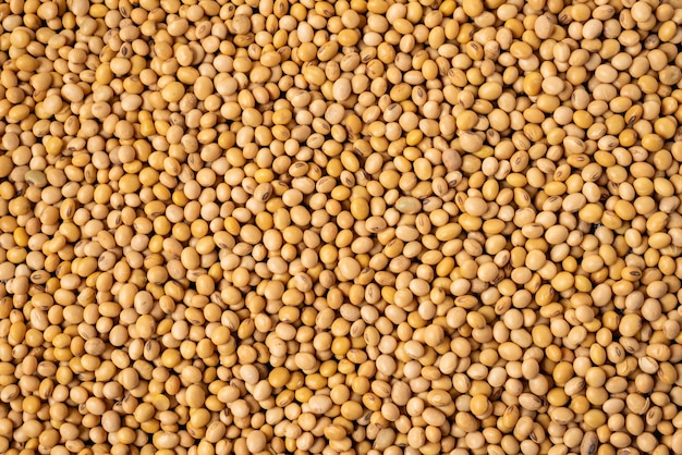 Soybean, dried soy beans, organic health grain seeds, texture and background.