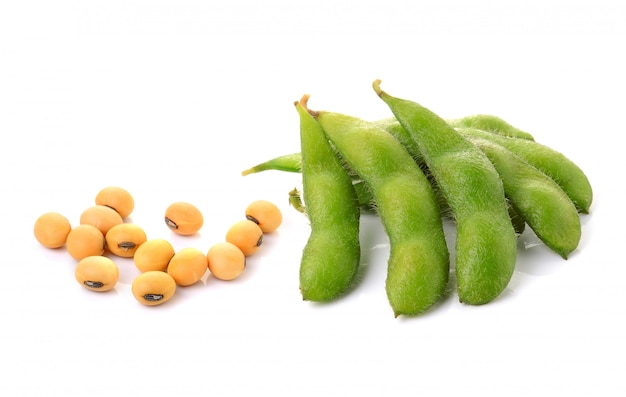 Soybeans isolated