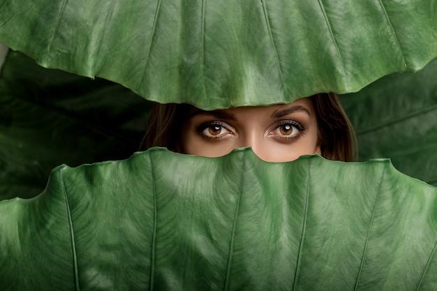 スパと美容。大きな葉の背景に茶色の目を持つ女性のワイルドな外観。
