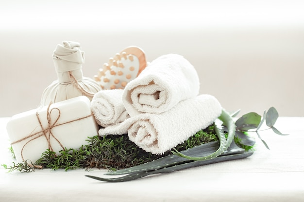Spa composition with aloe vera on a light background with a twisted white towel.